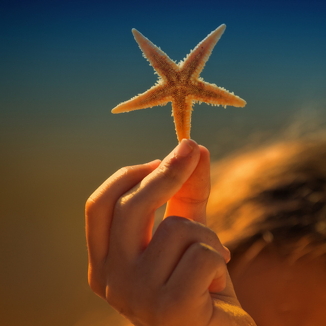 Giving Page Starfish